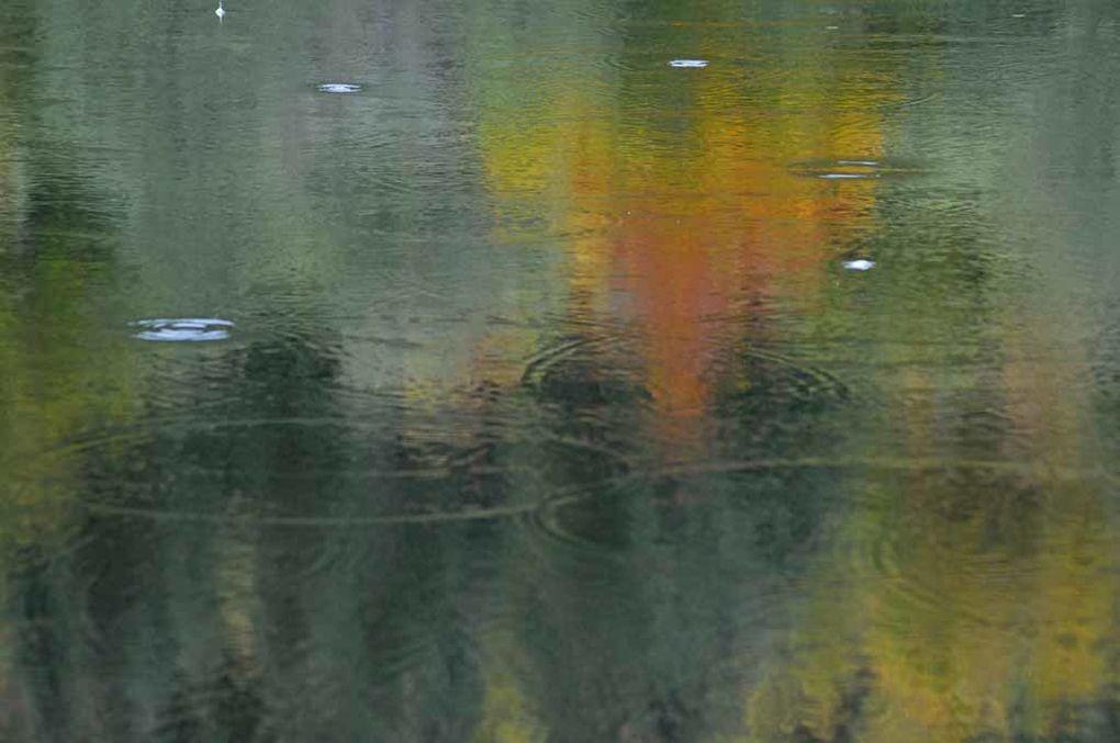 Album - Reflets-3