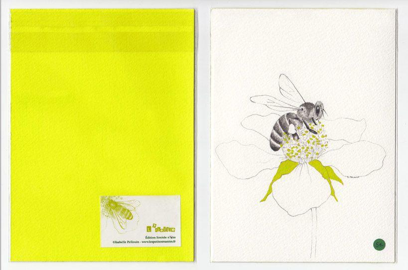 Séries d'estampe format 13x18 cm en édition limitée à un prix très abordable.