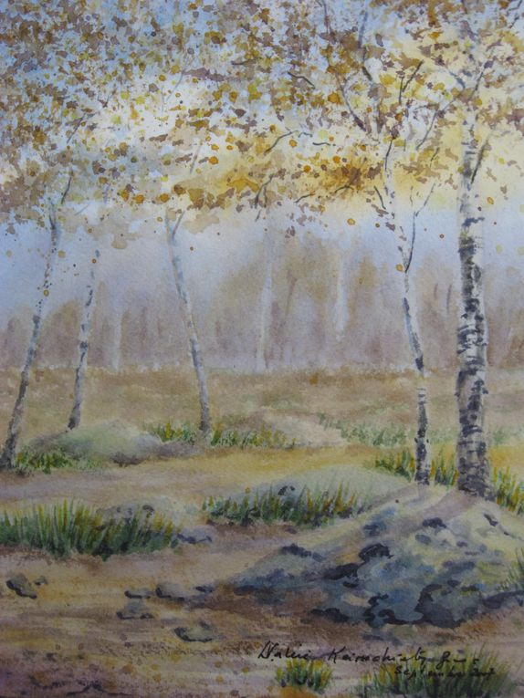 Album - AQUARELLE PAYSAGES