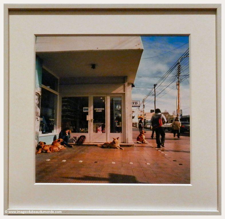 Album - PHOTOGRAPHIE