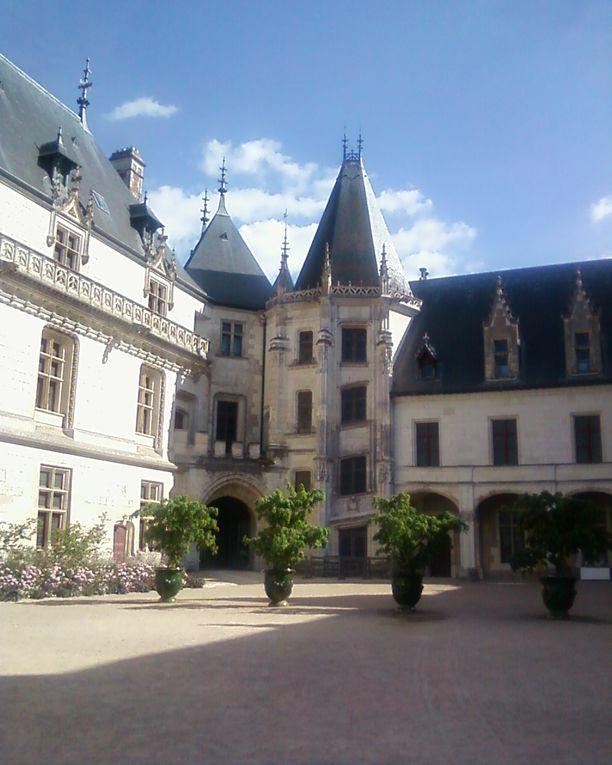 Dernier jour du mois d'août, passé la journée entière à déambuler dans les jardins du domaine, bullé sur les  hauteurs de Loire, avant de reprendre mon train à Onzain, douceur de vivre et univers végétaux et poétiques