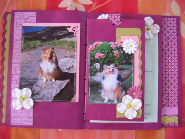 Album - Mini-Album-Craft-Violet