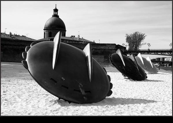 Album - un dimanche à Toulouse