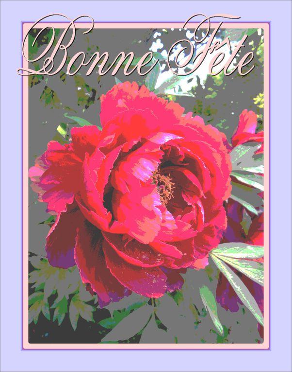 Album - 2012 cartes de fêtes des mères