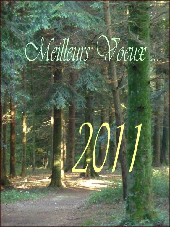Album - 2010 automne