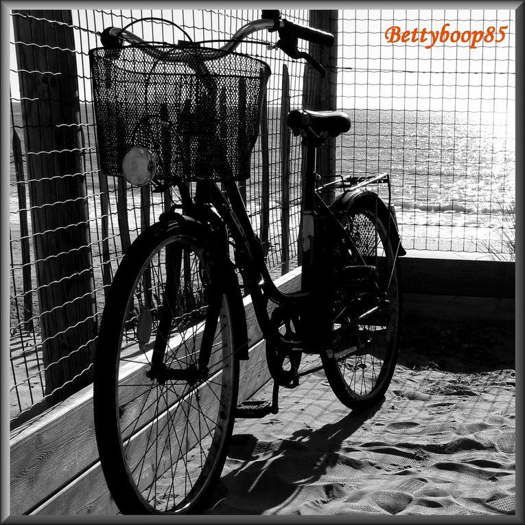 Album - avril09