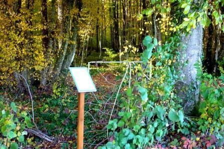 A Combles en Barrois, par bois et vallons, au rythme des poésies des enfants du village...