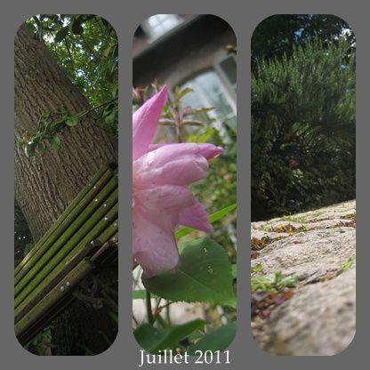 Album - Idées Jardin