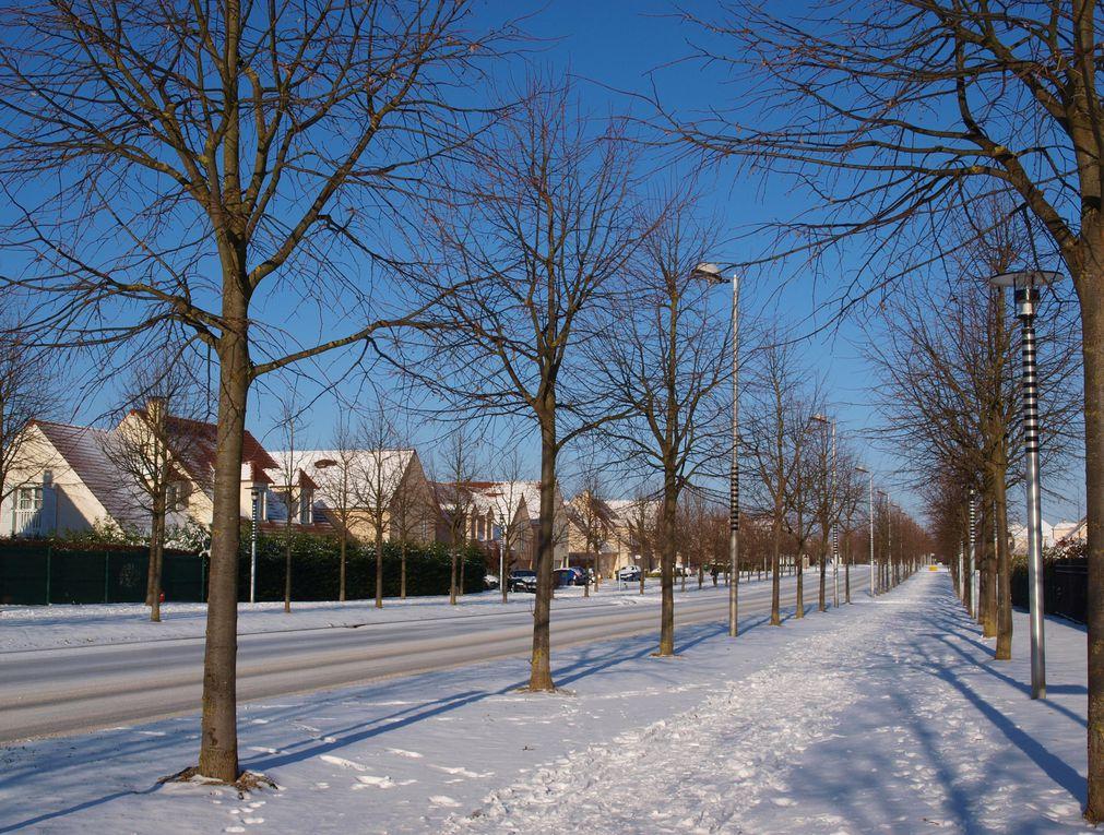 Album - Noël-blanc-sur-Bussy