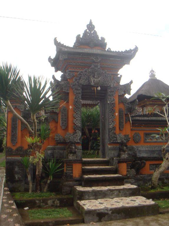 Quelques photos de Bali et Gili Trawangan