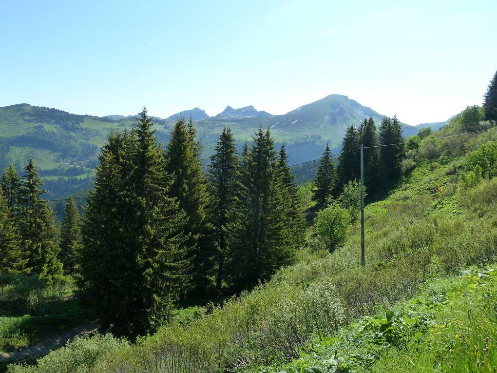 Départ Annecy, via Morzine Avoriaz et retour