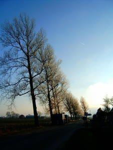 Es wird Abend in Friedrichskoog.Der Nebel war gerade für 2-3 Stunden weg und nimmt nun das Land langsam wieder in seinen Besitz.