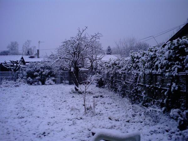 Neige-janvier-2009