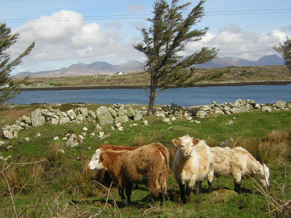 nos vacances en Irlande