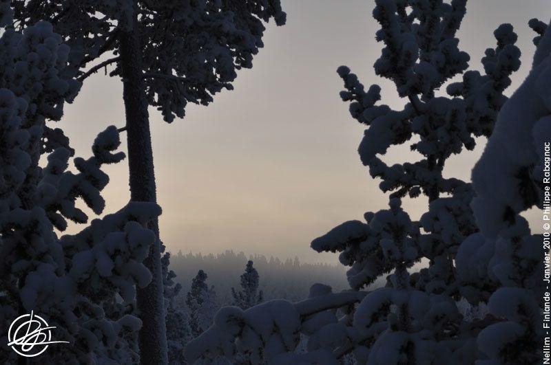 Petite balade au pays de l'hiver. Nellim (Finlande) début janvier 2010