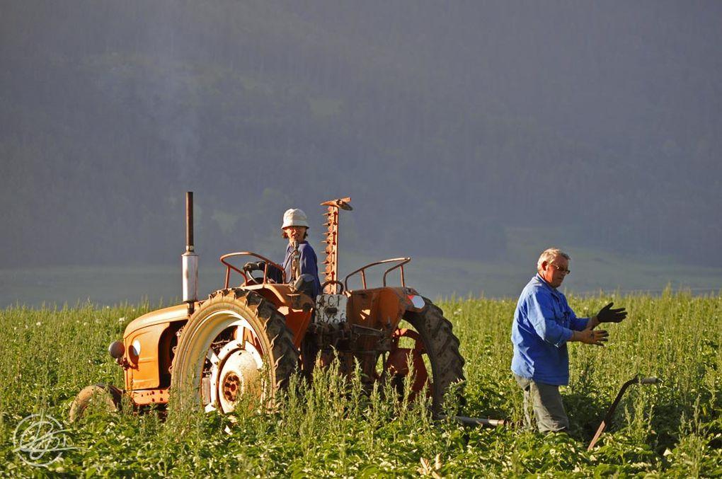 Corrèze et Pyrénées