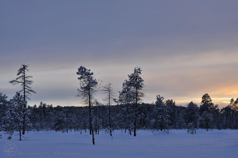 Séjour hivernal à Nellim (nord de la Finlande) Février-Mars 2011