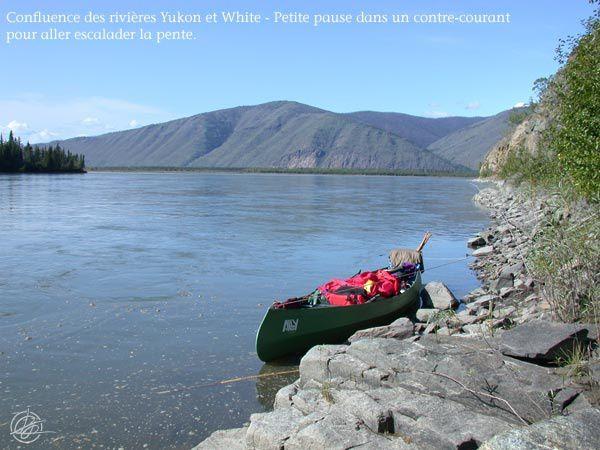 Été 2008 : Rivières Big Salmon et Yukon