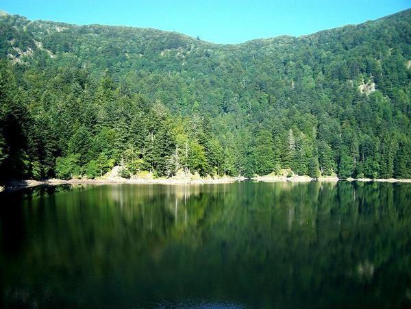 Album - Hautes-Vosges-2