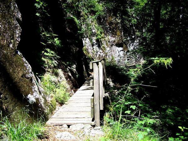 Album - Vosges sud