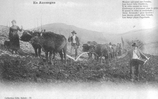 Photos de l'Abbé Gély, Joseph (1874-1954&#x3B; prêtre) de Salers.