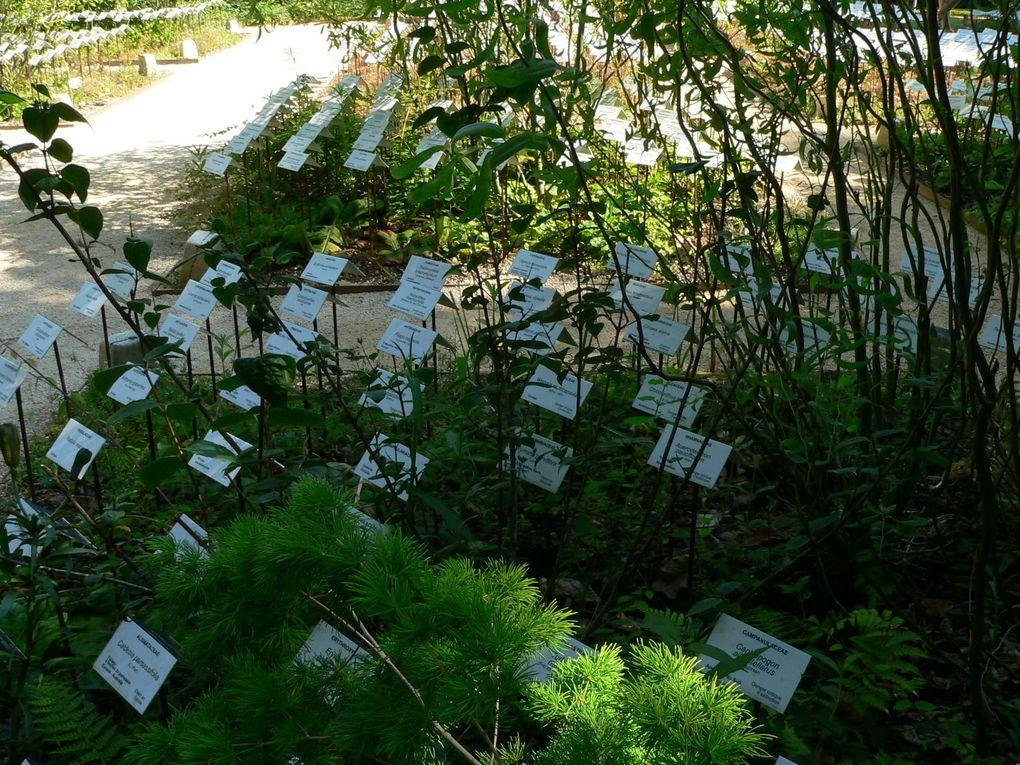 Festival des jardins de Chaumont édition 2011