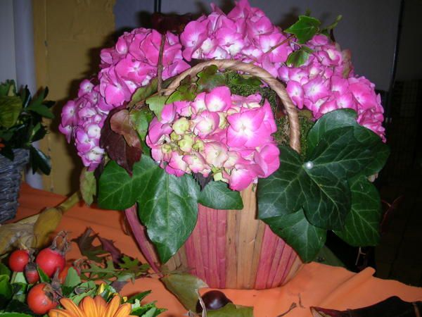Thème de l'automne avec fleurs et fruits de saison