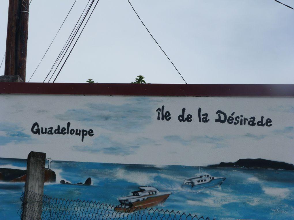Album - Désirade Toussaint-2013