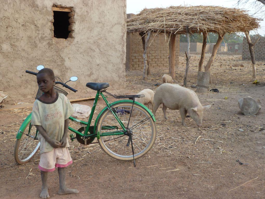 """VILLAGE DE SABOU - 80km OUEST DE OUAGADOUGOU - 5.000 habitants. L'Association """"LES AMIS DE SABOU"""" aide l'association Burkinabé """"WEND KUNI"""" à financer différentes projets : le campement touristique, la fabrication de spiruline, école, dispensaire,"""