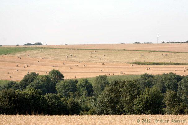 Ma région natale : le Nord Pas-de-Calais autrement vue