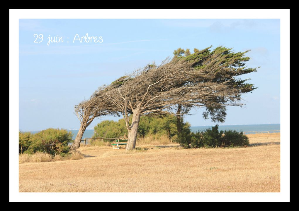 Album - 30-photos-en-juin-2011
