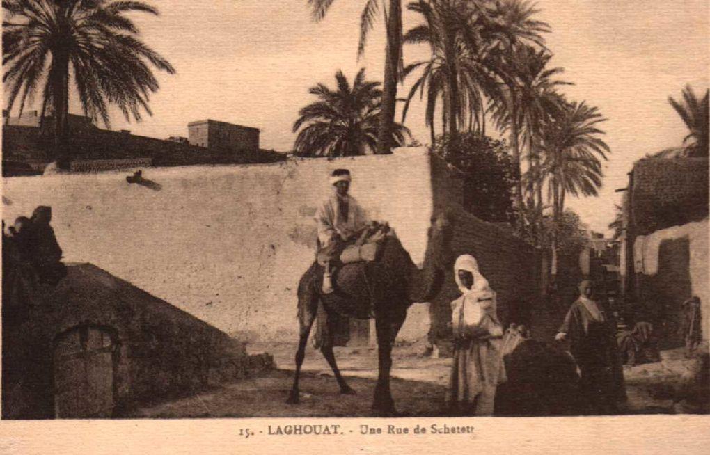 Album - les-meilleures de Laghouat