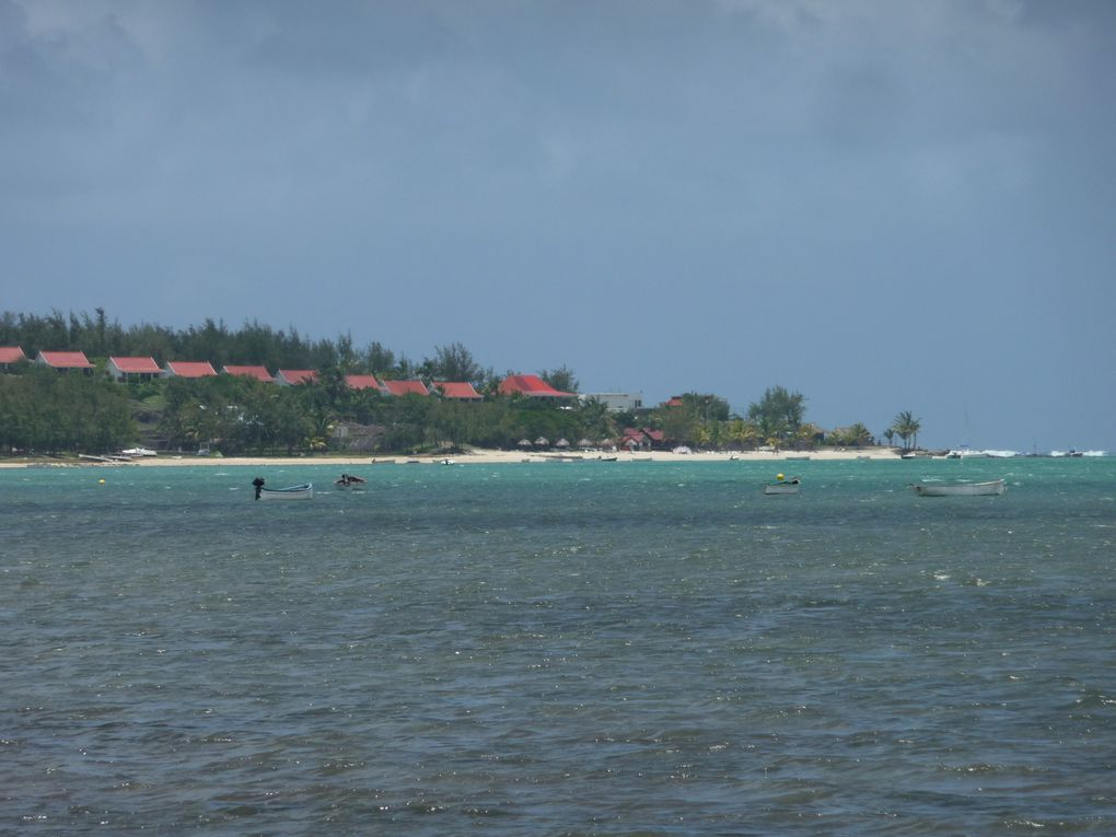 Album - Ile Rodrigues 2012