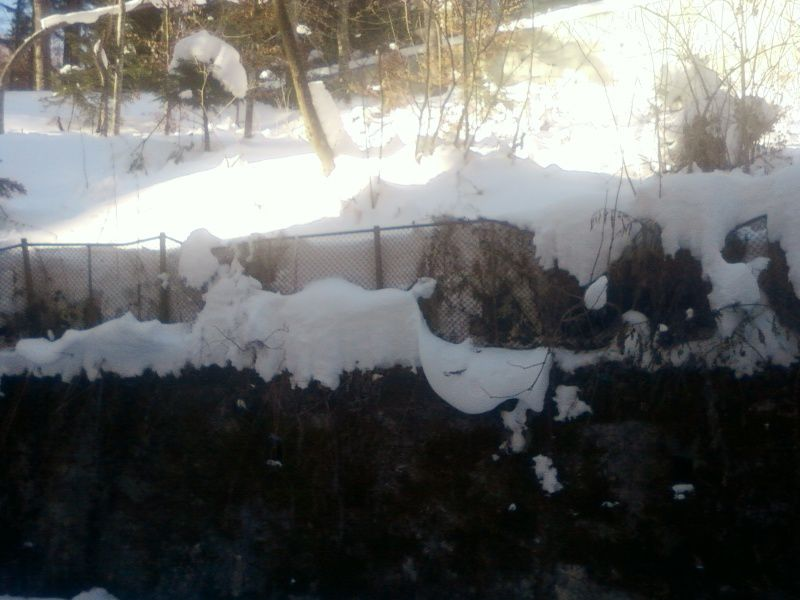 Încà o iarna grea pentru vila Smàràndescu-Sàvulescu.Photos: Diana Petre, Sinaia. 31/01/2012