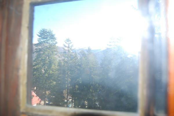 Starea actuala a Vilei VânàtoriPhotos:©E.CRIVAT (11/11/08)