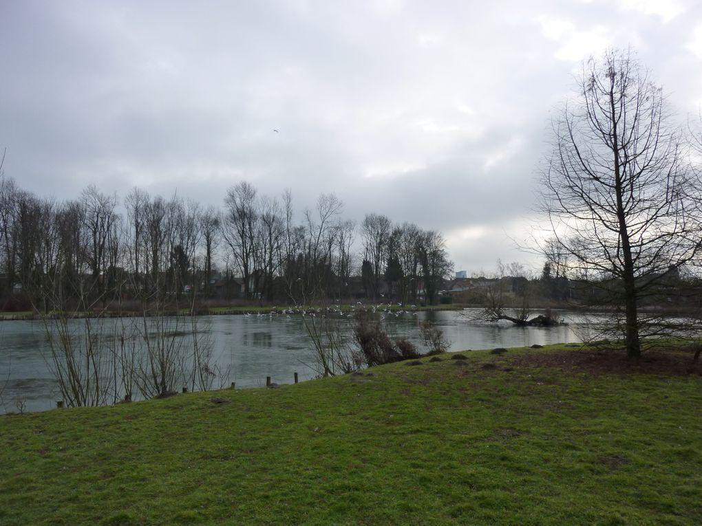 les étangs du nord , terrils et autres