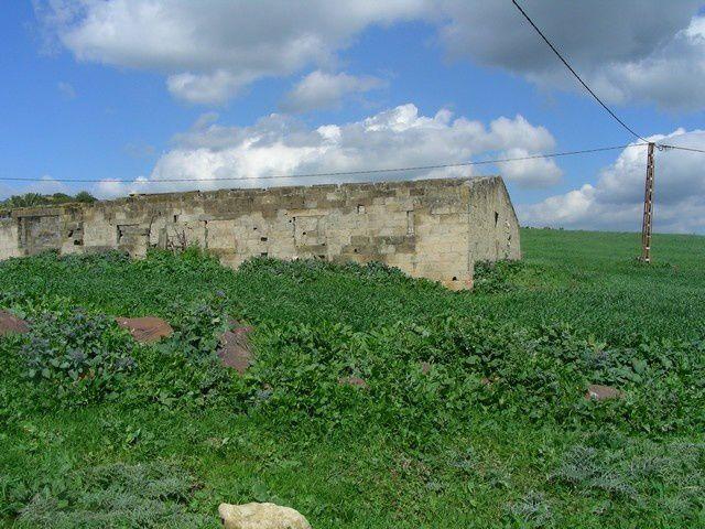 images de 2010 de Sidi Djémil de Gérard Rodriguez
