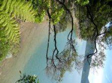 Album - Paysages Ile du Sud Nouvelle-Zelande