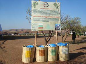 Organisé par l'association Pour un Maroc Vert, le premier festival africain d'écologie et de développement durable s'est tenu du 29 mai au 1er juin 2008 en partenariat avec Terre d'Amanar, à 30km de Marrakech.