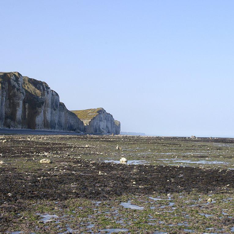 images de la randonnée sur la côte d'Albâtre par deux seinomarinsd'Ault(80) à Ste Adresse(76)