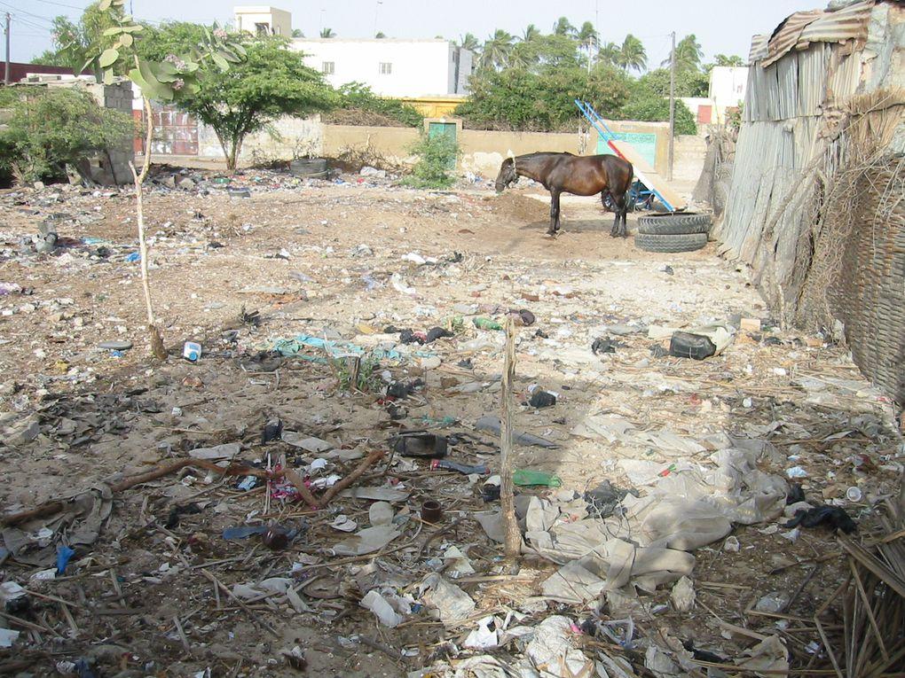 Saint Louis du Sénégal la ville et le quartier des pêcheurs