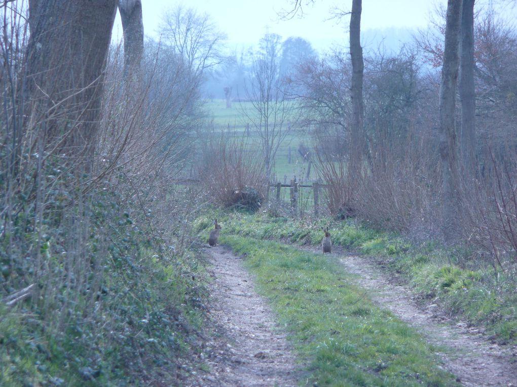 Différents clichés pris tout au long de la randonnée champêtre du 7 avril dernier...