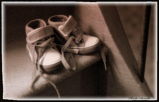 Album - galerie-photos-cousin