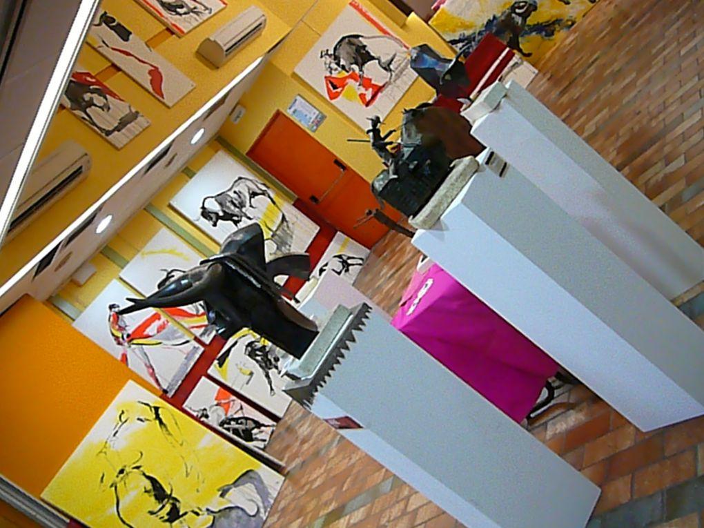 """Tout en images, les traces de l'exposition """"l'Auberge Espagnole"""" qui s'est déroulée durant la féria du Riz en septembre 2010. (salle jean et pons Dedieu, Arles)"""