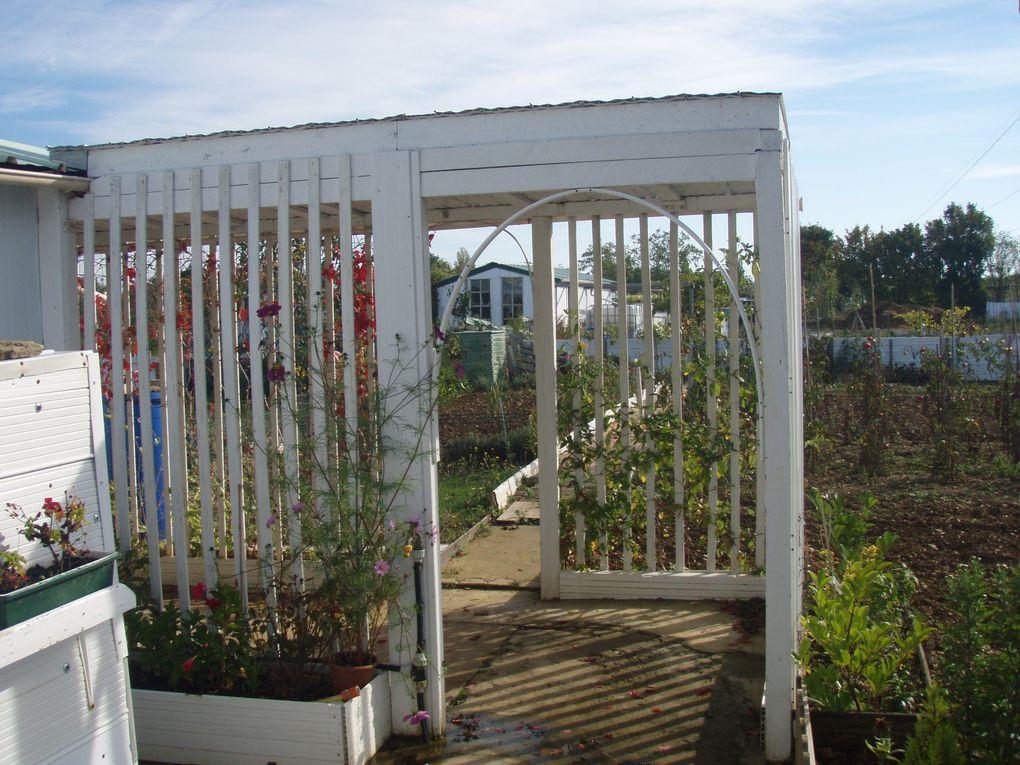 A l'occasion de l'Interview de France 3 aux jardins familiaux de Mireuil, jeudi 7 Octobre 2010, mon reportage et découverte de ces jardins et de leurs occupants . GMB.
