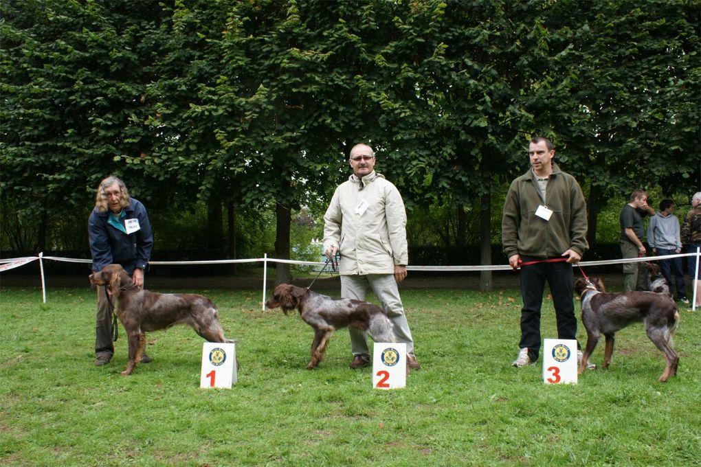 nationale d'élevage du club du 12/09/2010 dans le cadre de la Fête de la Nature et de la Chasse, parc du Château de Compiègne.