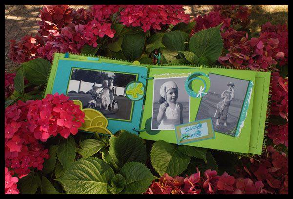 Album - Mini nature&amp&#x3B; libelule