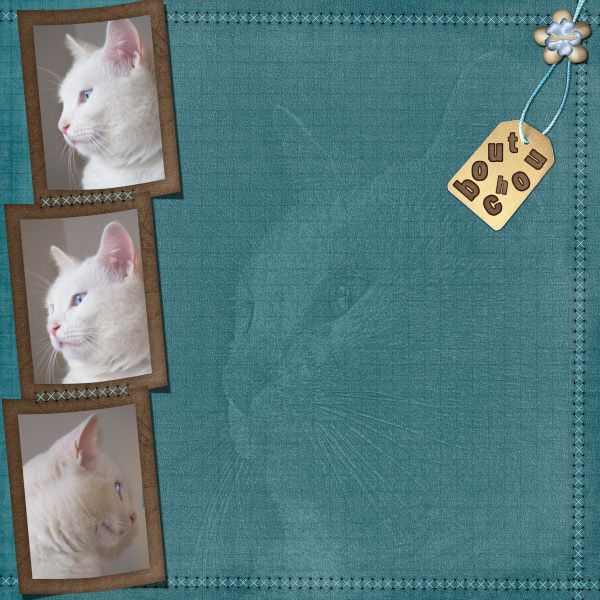 Album - Mes-pages-d-avant--.