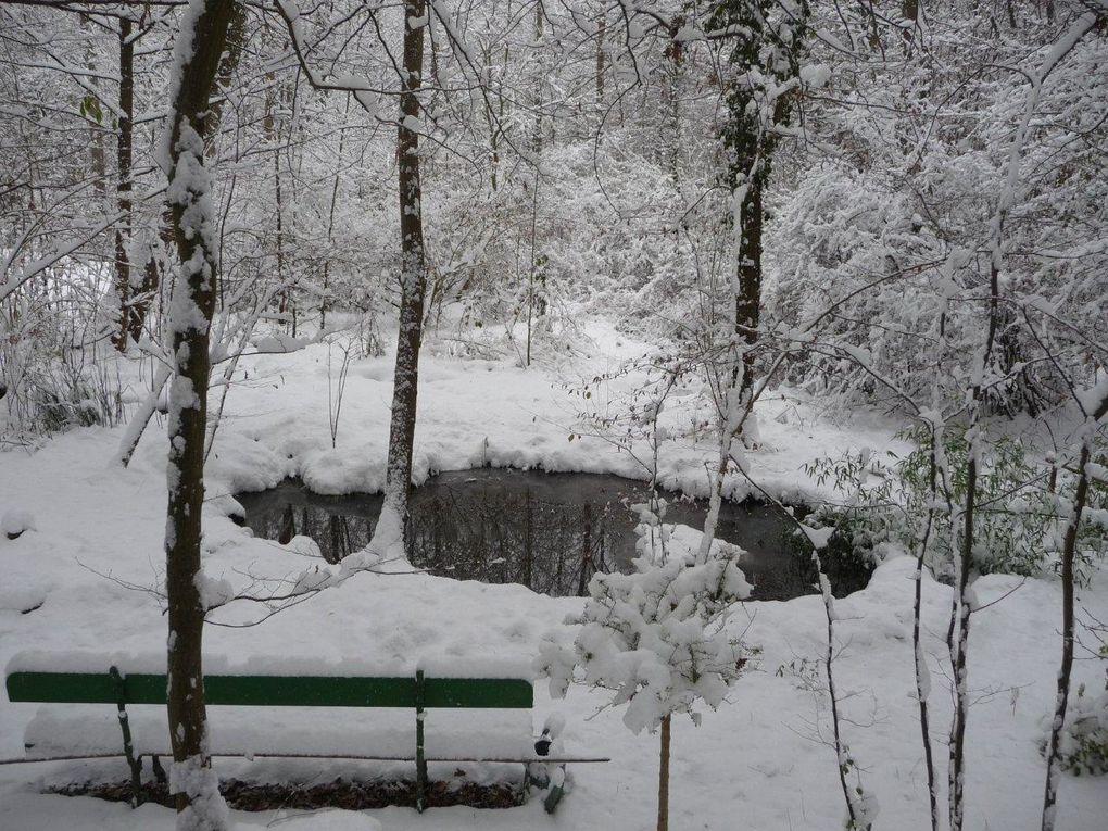 Neige dans la Sarthe début Décembre 2010