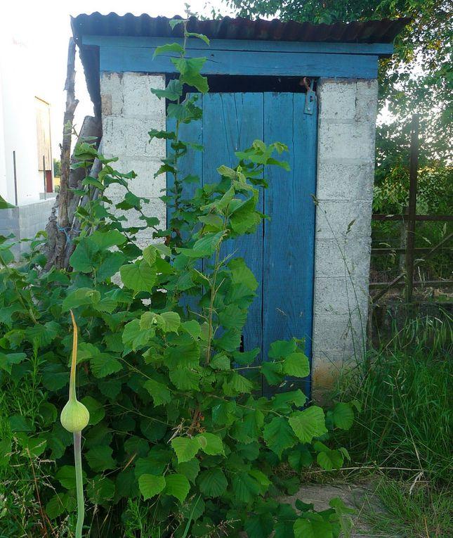Album - scrapbooking--au-jardin